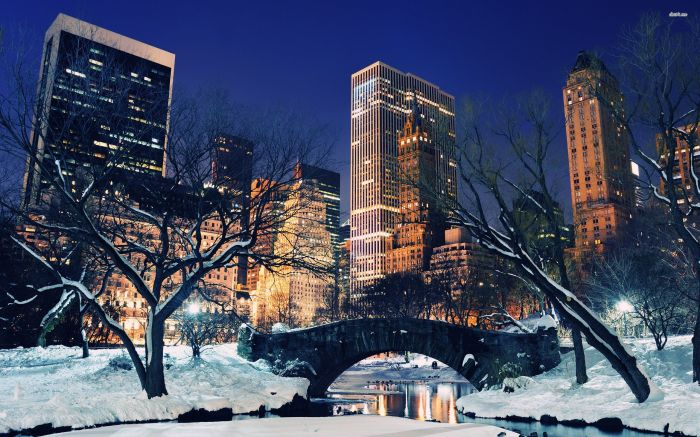 22375-snowy-central-park-nyc-2560x1600-world-wallpaper
